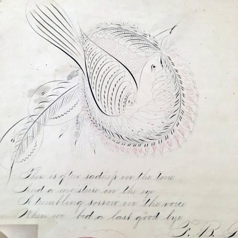 1800s Paper Calligraphy Art of Bird and Poem Restored