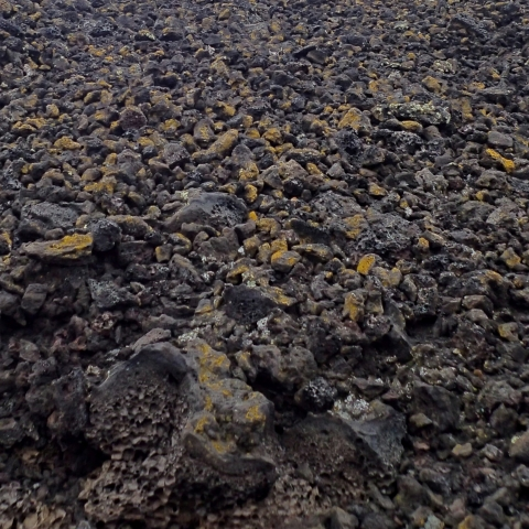 Black, brown, and golden pieces of lava rock